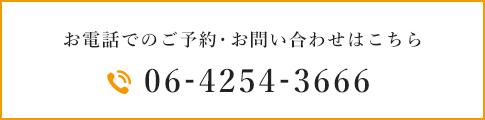 06-4254-3666